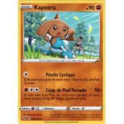 SS04_088/185 Kapoera Peu commune