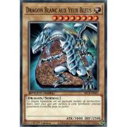 SBCB-FR087 Dragon Blanc aux Yeux Bleus Commune