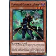 BLVO-FR012 Professeur DiGamma de la Force-S Commune