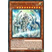 BLVO-EN005 Armed Dragon LV10 White Ultra Rare