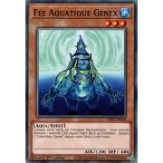 SDFC-FR020 Fée Aquatique Genex Commune