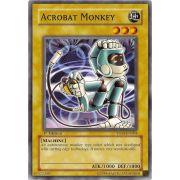 YSDS-EN004 Acrobat Monkey Commune