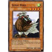 SDP-011 Sonic Bird Commune