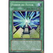DP04-FR023 Fusion du Futur Commune
