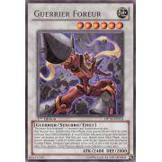 DP10-FR018 Guerrier Foreur Rare