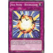 DP11-FR025 Aile Noire - Bourrasque Commune