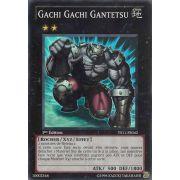 YS11-FR042 Gachi Gachi Gantetsu Super Rare