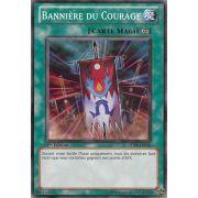 5DS3-FR024 Bannière Du Courage Commune