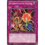 5DS3-FR032 Interruption De Raigeki Commune