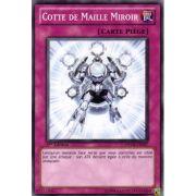 PHSW-FR067 Cotte de Maille Miroir Commune