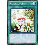 DREV-EN051 Naturia Forest Commune