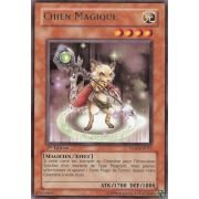 TSHD-FR023 Chien Magique Rare