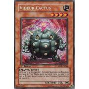 ABPF-FR084 Videur Cactus Secret Rare