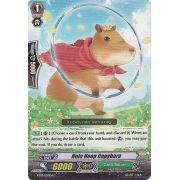 BT07/057EN Hula Hoop Capybara Commune (C)