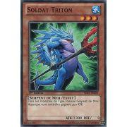 SDRE-FR009 Soldat Triton Commune