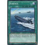 SDRE-FR028 Surface Commune