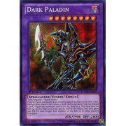 LCYW-EN048 Dark Paladin Secret Rare