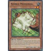 LCYW-EN235 Nimble Momonga Commune