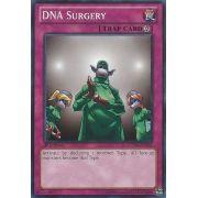 LCYW-EN284 DNA Surgery Commune