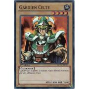 LCYW-FR003 Gardien Celte Super Rare