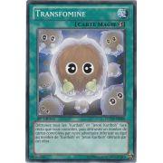 LCYW-FR088 Transfomine Commune