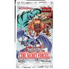 Les Forces Secrètes (THSF)