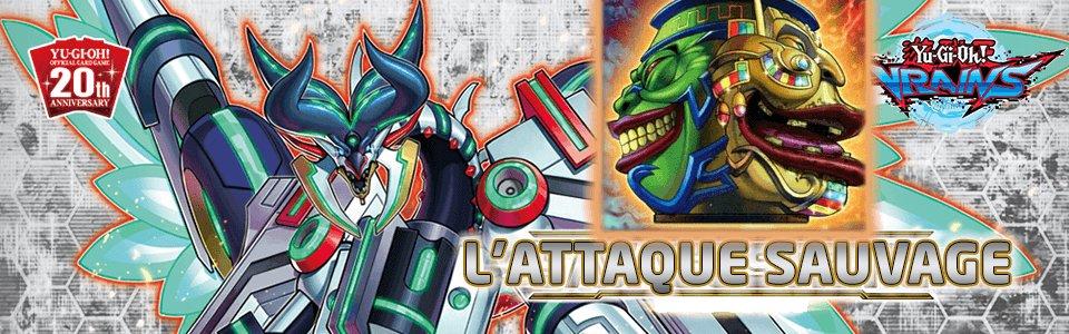 L'Attaque Sauvage (SAST)