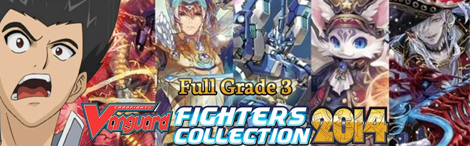 Fighter's Collection 2014 (FC02)