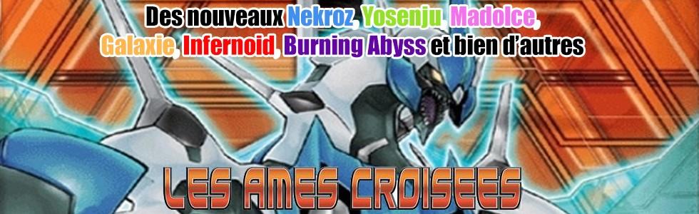 Les Âmes Croisées (CROS)